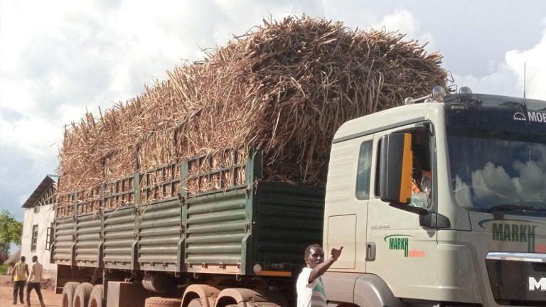 Uganda Sugarcane Truck
